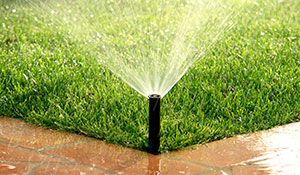 madison lawn care specials coupon