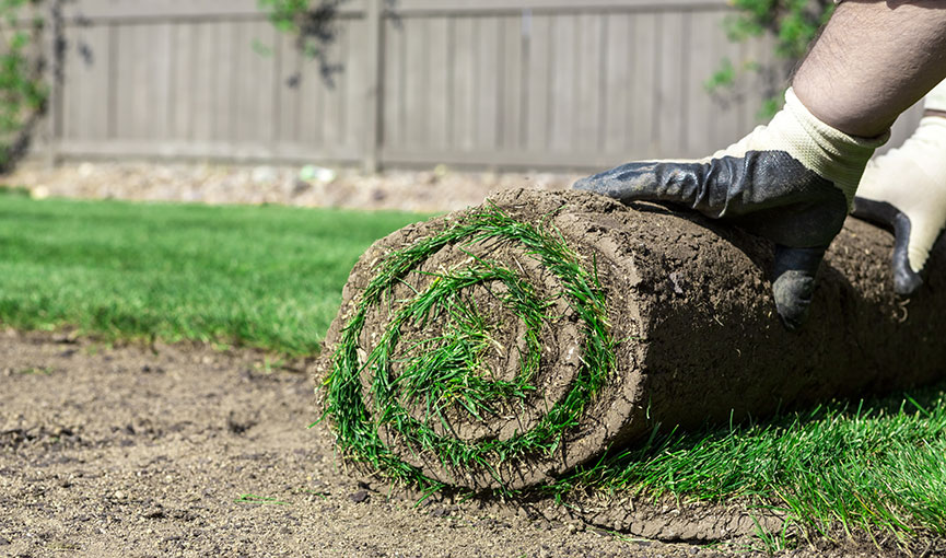 img-residential-lawn-care-madison.jpg